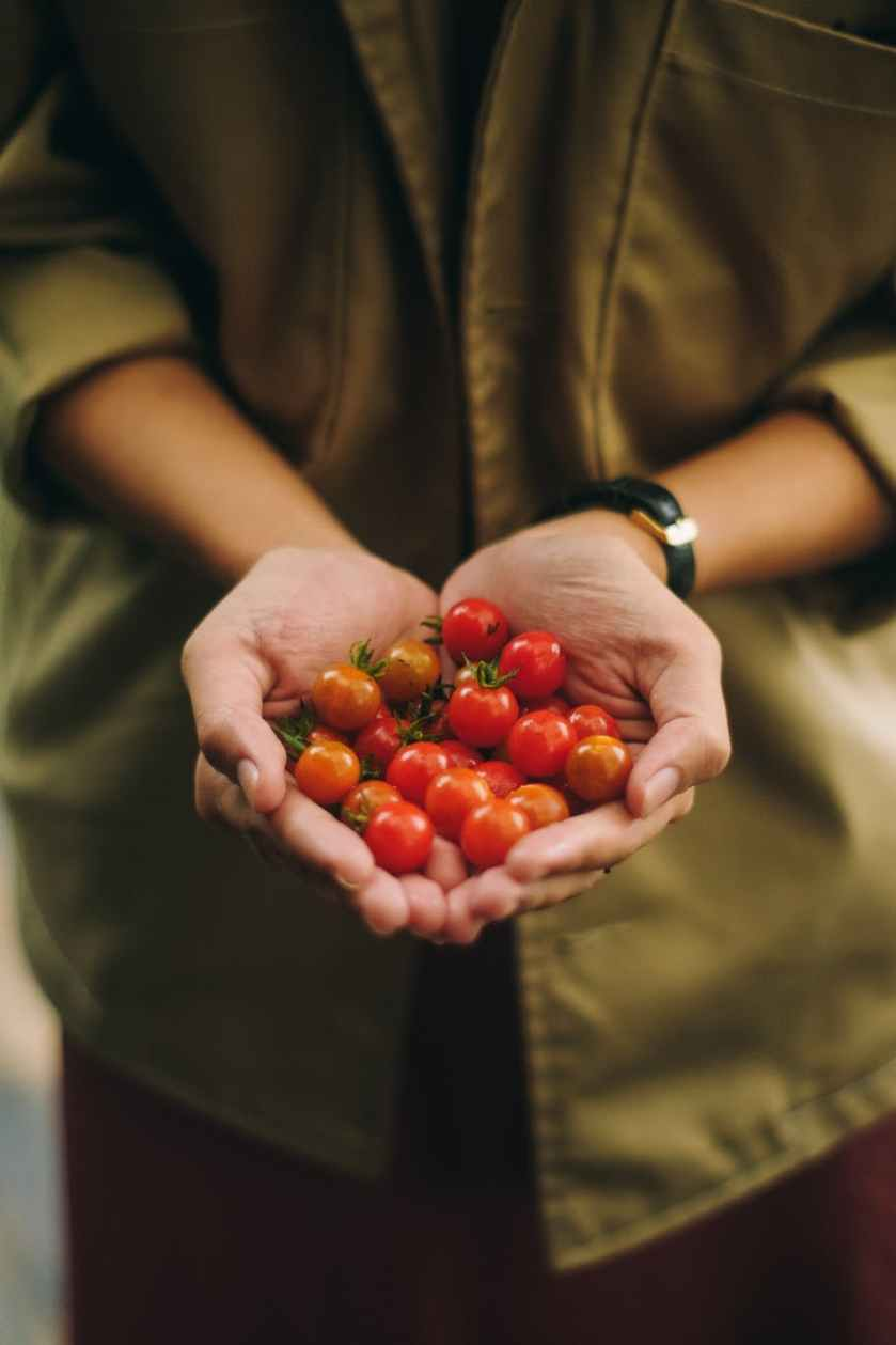 photo of person holding cherry tomato